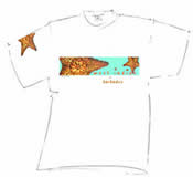 Mens Fidel Grenada Starfish T Shirt